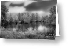 Between Black And White-24 Greeting Card
