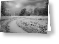 Between Black And White-25 Greeting Card