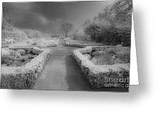 Between Black And White-26 Greeting Card