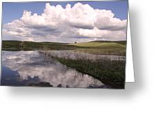 Between Storms Greeting Card
