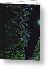 Between The Hedges  Greeting Card
