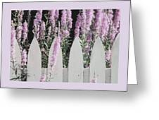 Beyond A Garden's Picket Fence Greeting Card