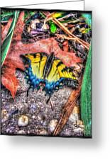 Beyond Chrysalis-tiger Swallowtail Greeting Card
