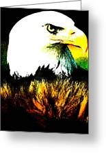 Beyond Eagle View Greeting Card