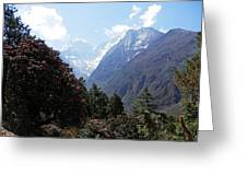 Beyond The Rhododendrons 1 Greeting Card