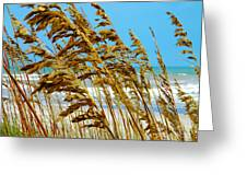 Beyond The Sea Oats Lies Eternity Greeting Card by Lorraine Heath