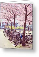 Bicycles Under The Blooming Trees. Pink Spring In Amsterdam  Greeting Card