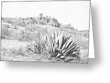 Bidwell Park Cactus Greeting Card