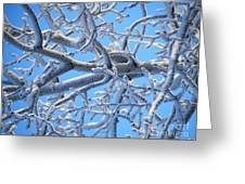 Bifurcations In White And Blue Greeting Card