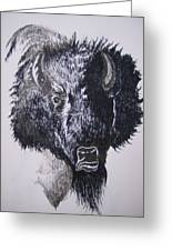Big Bad Buffalo Greeting Card
