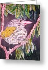 Big Bird Greeting Card by Linda Vaughon