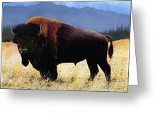 Big Bison Greeting Card