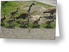Big Family Crossing The Road Greeting Card
