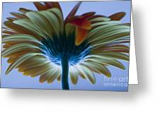 Big Flower Greeting Card
