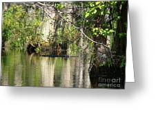Big Gator Greeting Card