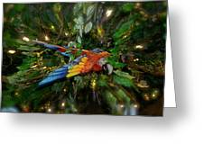 Big Glider Macaw Digital Art Greeting Card