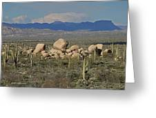 Big Granite Boulder In The Desert Greeting Card