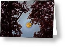 Big Old Autumn Moon Greeting Card