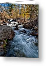 Big Pine Creek Greeting Card by Cat Connor