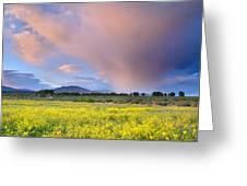Big Storm And Tornado At Sunset Greeting Card