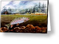 Big Thompson Trout Greeting Card