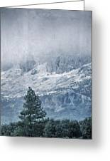 Big Tree At The Mountains Greeting Card