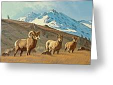 Bighorn Below Electric Peak Greeting Card