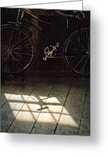 Bike Light And Shadow In Barn Greeting Card