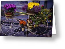 Bike Planter Greeting Card