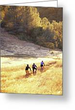 Bikers On Foresthill Divide Trail Greeting Card