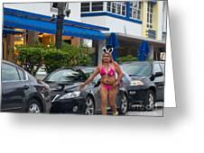 Bikini Bunny In Miami Greeting Card