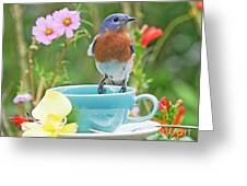 Billy Bluebird Having Tea Greeting Card