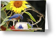 Bluebird And Tea Cup Greeting Card