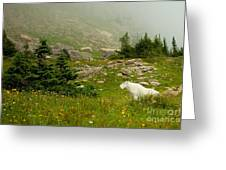 Billy Goat 2 Greeting Card