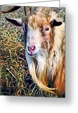Billy Goat Closeup Greeting Card