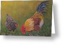 Biltmore Chickens  Greeting Card