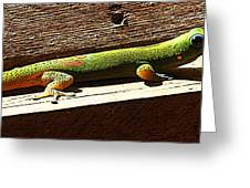 Binky The Gecko Greeting Card by Colleen Cannon