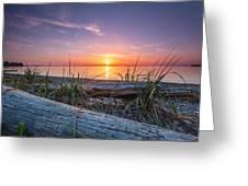 Birch Bay Sunset Greeting Card