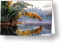 Birch Creek Beauty Greeting Card