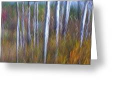Birch Fall Abstract Greeting Card
