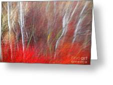 Birch Trees Abstract Greeting Card