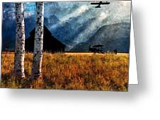 Birch Trees And Biplanes  Greeting Card