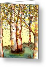 Birch Trees Greeting Card by Diane Ferron