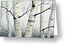 Birch Trees In The Forest By Christopher Shellhammer Greeting Card