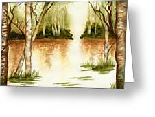 Birch Trees On The Lake Greeting Card