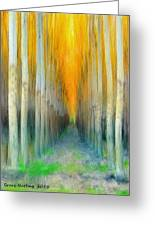 Birches Greeting Card