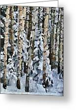 Birches In The Winter Greeting Card
