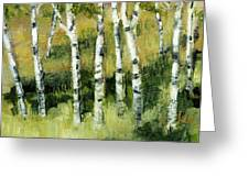 Birches On A Hill Greeting Card