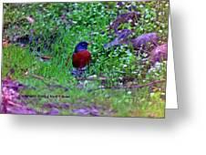 Bird 3 Greeting Card