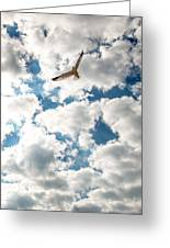 Bird And The Clouds Greeting Card